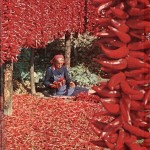 redpepperdrying